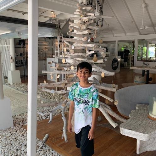 lux south ari lobby 2
